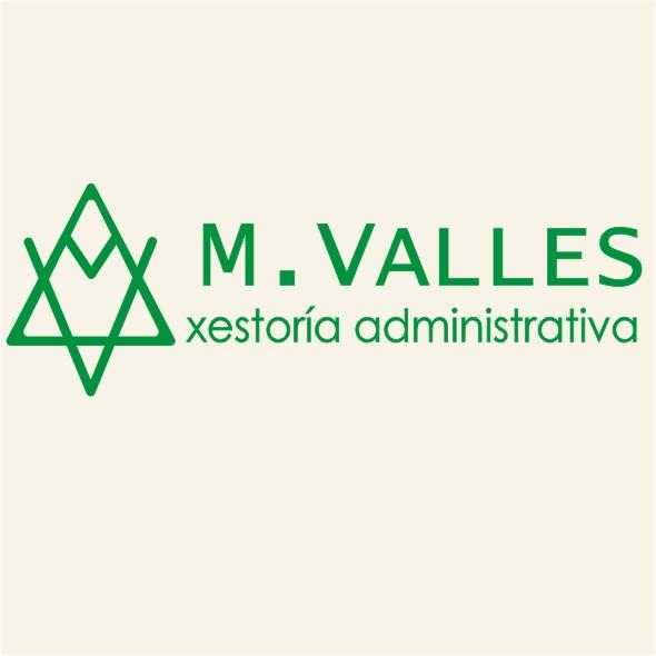 M VALLES ASESORIA Y CONSULTING