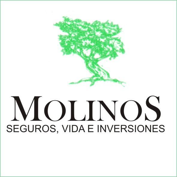 MOLINOS, AGENTES DE SEGUROS Y GESTION