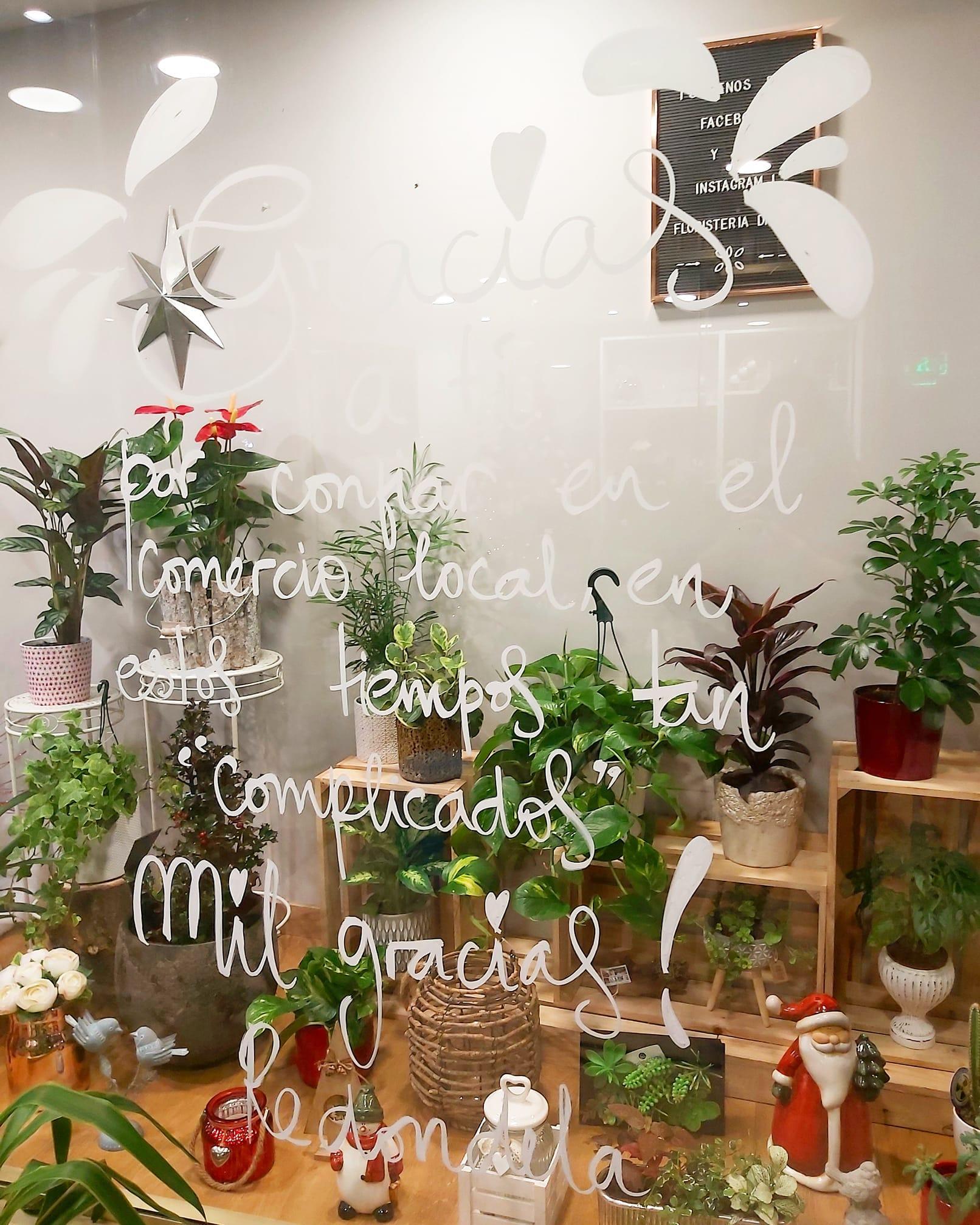 Floristeria Drayto.jpg